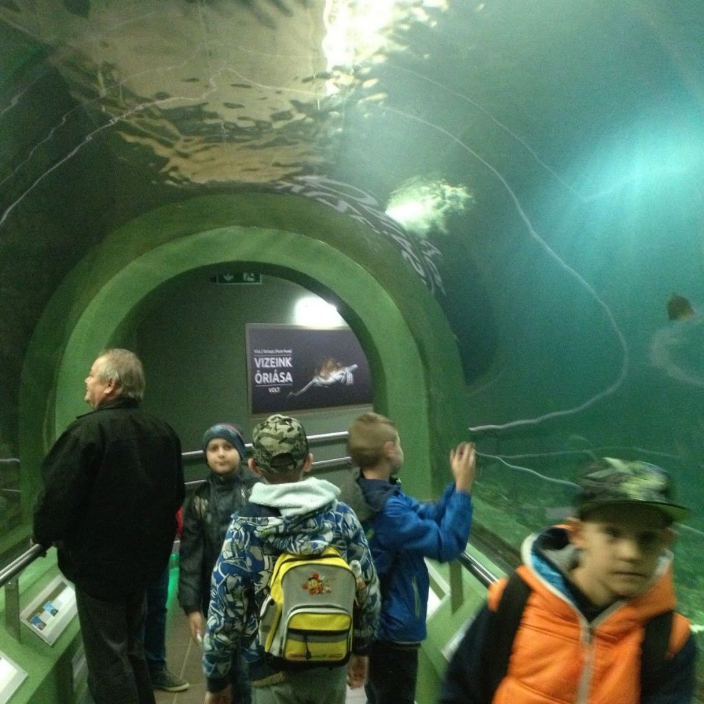 Alagút az Ökocentrumban