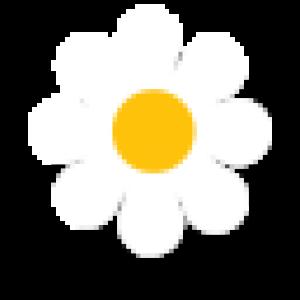 flower-1_retina