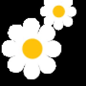 flower-title-1_retina