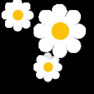 flower-title-2_retina